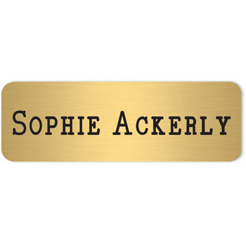 "Los Angeles Standard Metal Name Badge (Standard Size 1"" x 3"")"